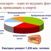 Причины и патогенез атеросклероза