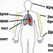 Что такое сердечно-сосудистая дистония