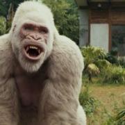 Дуэйн Джонсон, гигантская горилла и летающий волк – в боевике «Рэмпейдж»