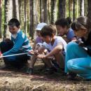 Детский лагерь на осенние каникулы– хороший вариант отдыха