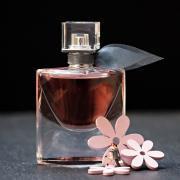 Как подобрать лучший парфюм?