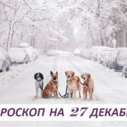 Гороскоп на 27 декабря: нет порока страшнее, чем душевная пустота