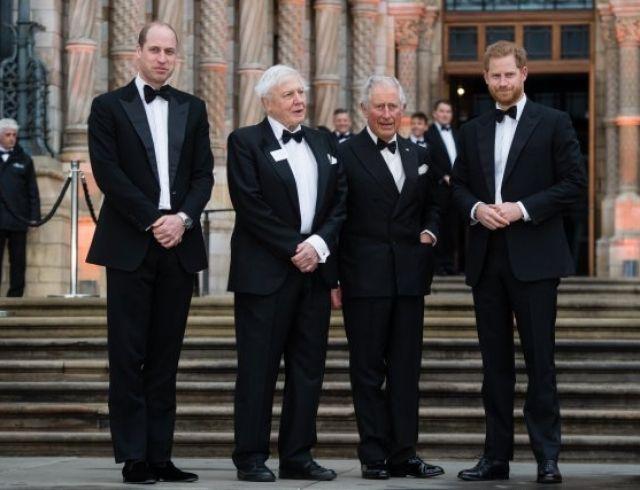 """Вечер смокингов: Дэвид Бекхэм, принцы Гарри и Уильям без жен на премьере фильма """"Our Planet"""" (ФОТО)"""