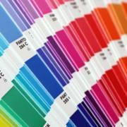 Шафрановый, классический синий, оливковый: Pantone назвал 16 главных оттенков 2020 года