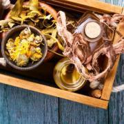 Оздоровление с помощью чистотела: народные рецепты