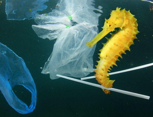 Официально: в Украине приняли закон о запрете пластиковых пакетов