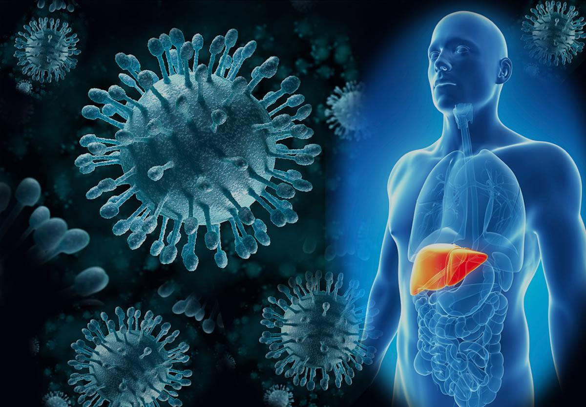 Гепатит С, симптомы, лечение