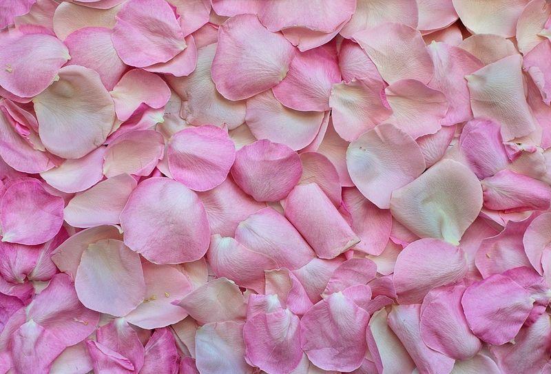 Поздравления Валентине и Валентину с праздником: короткие поздравления с 14 Февраля