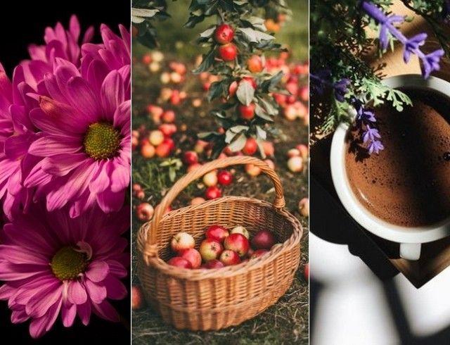 Список дел на осень, которые стоит воплотить в жизнь каждому